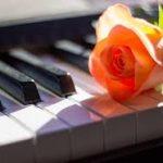 ピアノ発表会へ向けて課題曲が仕上がらず|3日間の集中レッスン!中学受験と習い事の両立を甘く見ていた後悔と反省