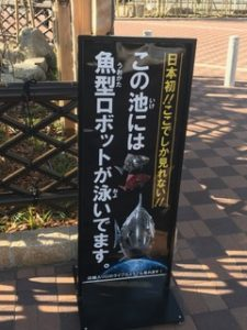 貝塚くら寿司魚市場