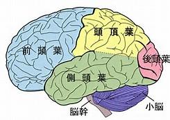 受験脳の作り方中学受験