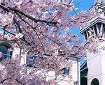 大谷中学校・高等学校2018年度入試イベントスケジュール