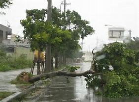 台風情報台風3号7月4日