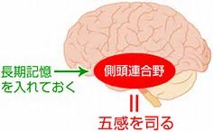 五感記憶術