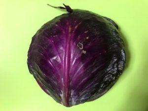 小学生自由研究紫キャベツ実験色まとめ