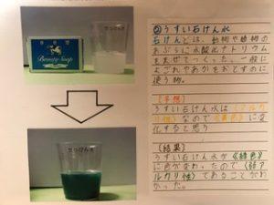 自由研究紫キャベツ理科化学の実験のまとめ方