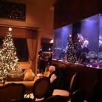 ピアノのクリスマス発表会|今年は次女のみの参加