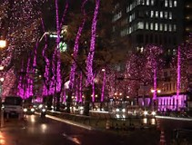 堺の桜採イルミネーション