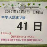 智辯和歌山中学校過去問時間内に解けない理由|中学受験入試本番まで41日