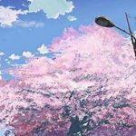五ツ木・駿々堂中学進学学力テスト会アンケート|中学受験生の母の本音の日記2月16日
