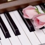 ピアノ発表会に間に合わなかった課題曲|中学受験生の母の本音の日記7月18日