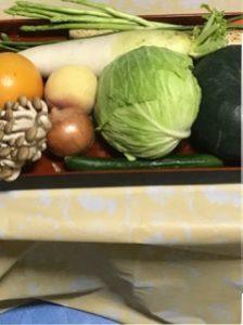 夏休み自由研究うく野菜としずむ野菜