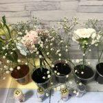 小学生夏休みの面白かった自由研究|食用色素を使い白い花に色をつける実験【実験動画あり 】